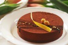 Schokoladentorte-Rezept (Barbara Pheby@fotolia.com)